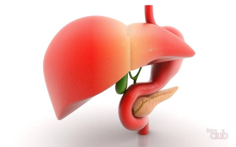 Лечение шротом расторопши печени и поджелудочной железы