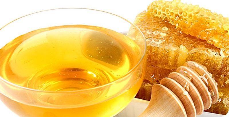 Мед при панкреатите и холецистите