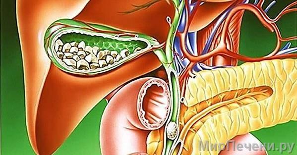 Болезни и заболевания желчного пузыря