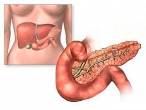 Диффузные изменения в области печени и поджелудочной железы