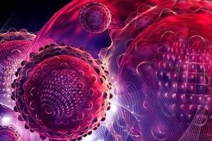 молекулы гепатита С