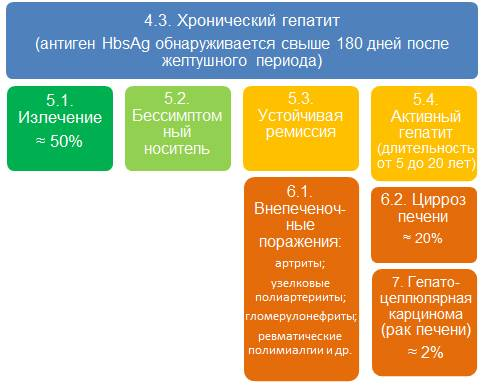 Гепатит в anti hbv
