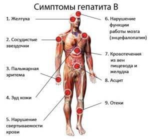 Синегнойный гепатит