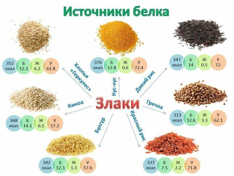 Источники белка при циррозе