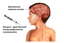 Прививка от полиомиелита