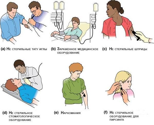 Как можно заразиться гепатитом B