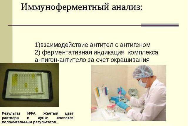 Иммуноферментный анализ (ИФА)