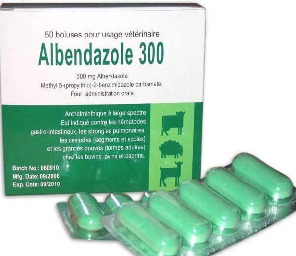 Альбендазол для избавления от паразитов