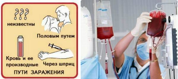 пути передачи гепатита с
