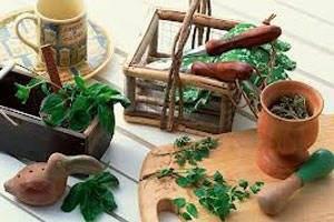 Лечение кисты печени народными средствами