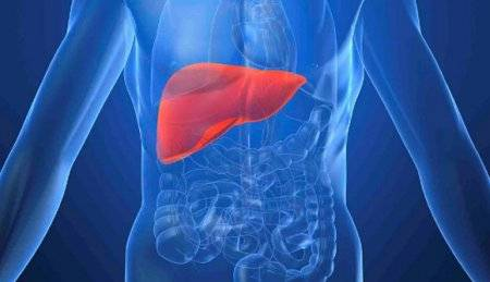 Гепатит а можно ли заразиться через кровь