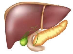 Можно ли вылечить жировой гепатоз с помощью народных средств?