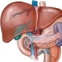 гепатит с лечится полностью