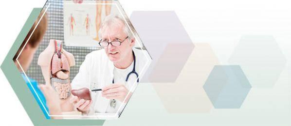 какой врач лечит печень